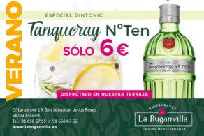 verano gin tonic